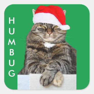 Weihnachtskatzehumbug-Foto mit Weihnachtsmannmütze Quadratischer Aufkleber
