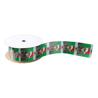 Weihnachtskatzehumbug-Foto mit Weihnachtsmannmütze Satinband