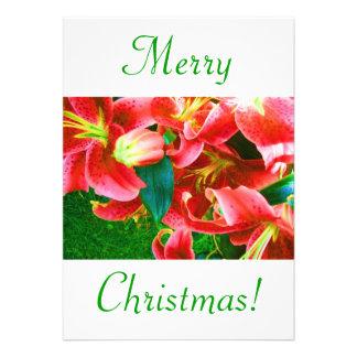 Weihnachtslilien V Individuelle Ankündigungen