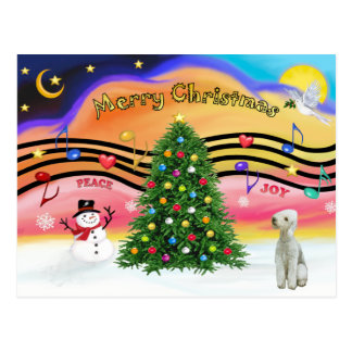 Weihnachtsmusik 2 - Bedlington Terrier Postkarte