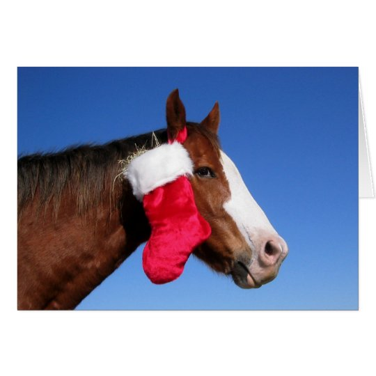 Weihnachtspferd Grußkarte