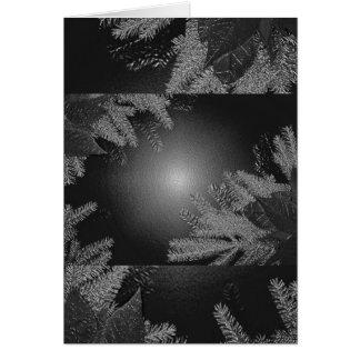 Weihnachtspoinsettia-Schwarzes und Grau