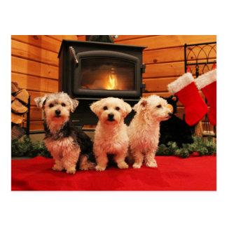 Weihnachtspostkarte - hölzerne Ofen-Hunde Postkarte