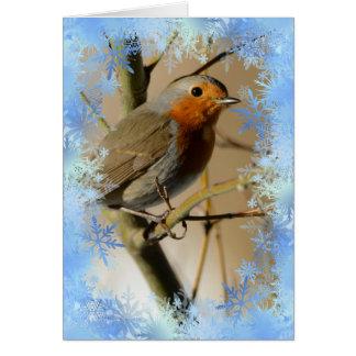 Christmas robin and snowflakes
