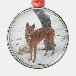 Weihnachtssammlung addieren Haustier-oder Silbernes Ornament