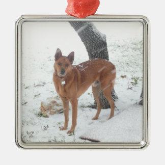 Weihnachtssammlungs-Haustier oder Familien-Foto Silbernes Ornament