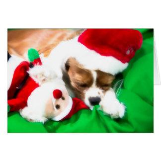 Weihnachtsschlafenwelpe mit karte