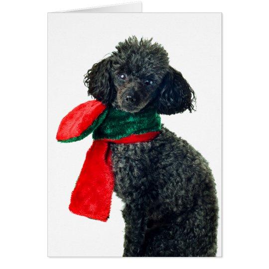 Weihnachtsschwarzer Zwergpudel-Hunderen-Rot-Schal Karte