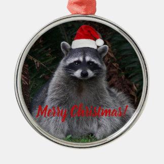 WeihnachtsWaschbär-Feiertag Silbernes Ornament