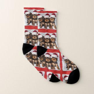 Weihnachtsyorkshire-Terrier-Hündchensocken Socken