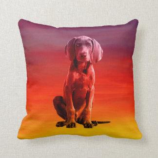 Weimaraner Hund, der auf Strand sitzt Kissen