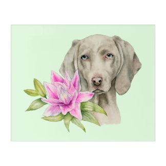 Weimaraner Hunde-und Lilien-Aquarell-Malerei Acryldruck