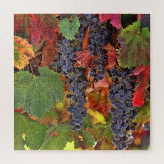 Wein-Land-Ernte-Traube Puzzel