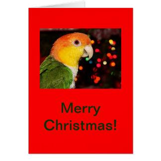 Weiß aufgeblähte Caique-Papageien-frohe Karte