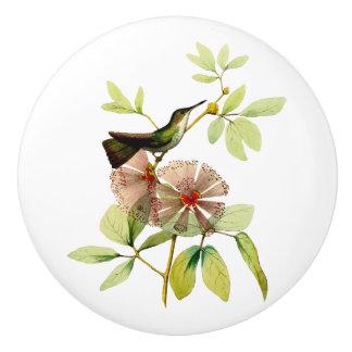 Weiß aufgeblähter Smaragdkolibri Keramikknauf