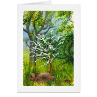 Weißdorn-Blüte Karte