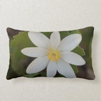 Weiße Blumelumbales Throw-Kissen Lendenkissen