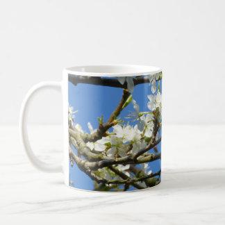 Weiße Blüte im Frühjahr Kaffeetasse