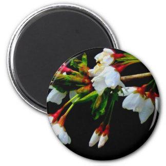Weiße Blüte Runder Magnet 5,7 Cm