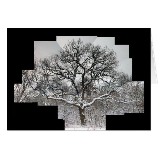 Weiße Eiche im Winter Karte