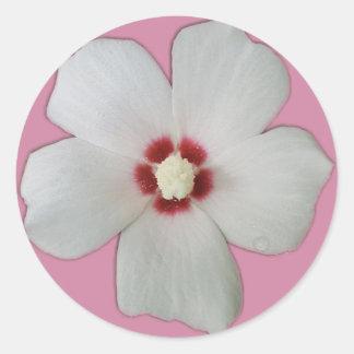 Weiße Hibiskus-Blume Runder Aufkleber