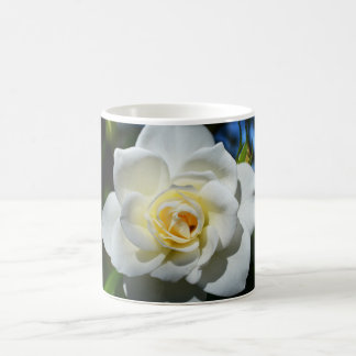 Weiße Hochzeits-Rosen-Kaffeetasse Tasse