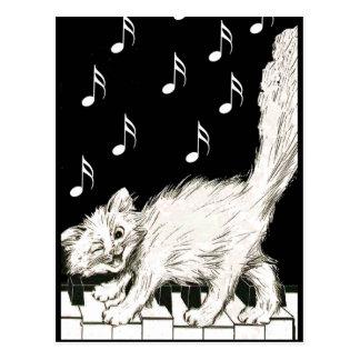 Weiße Katze auf Klavier-Schlüsseln Postkarte