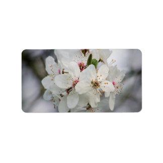 Weiße Kirsche mit Blumen Adressaufkleber