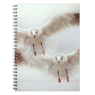 Weiße Möven im Flug Notizbuch