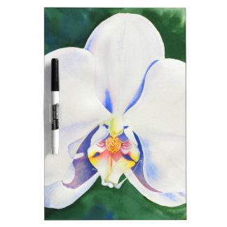 Weiße Orchidee Trockenlöschtafel