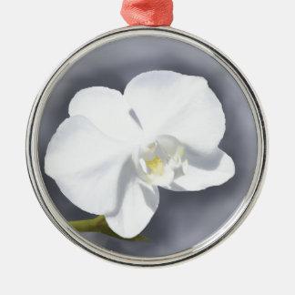 Weiße Orchideen-Blume Rundes Silberfarbenes Ornament