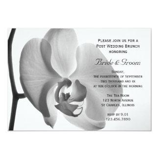 Weiße Orchideen-Posten-Hochzeits-Brunch-Einladung 12,7 X 17,8 Cm Einladungskarte