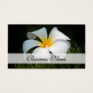 Weiße Plumeriafrangipani-Hawaii-Blumen Visitenkarte