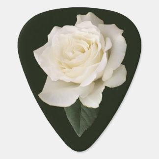 Weiße Rose Plek