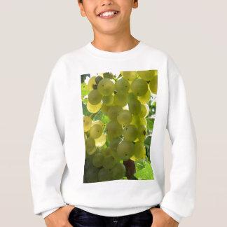 Weiße Trauben in einem Weinberg Sweatshirt