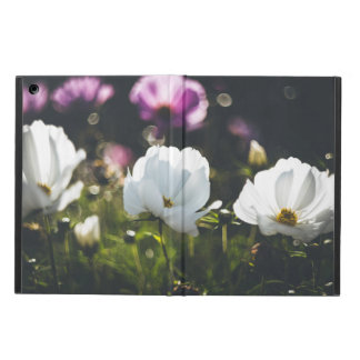 Weiße und lila Anemonen-Blumen