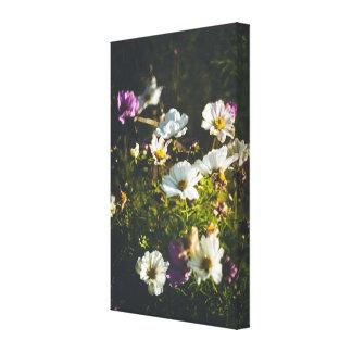 Weiße und lila Anemonen-Blumen Leinwanddruck