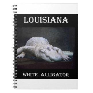 Weißer Alligator Louisianas neu Notizblock