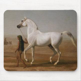 Weißer arabischer Stallion Mousepads