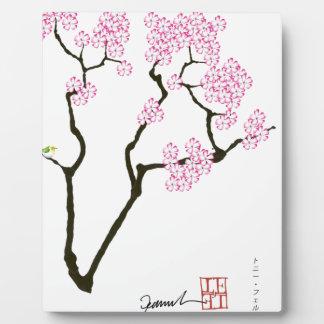 weißer Augenvogel Kirschblüte-Blüte, tony Fotoplatte
