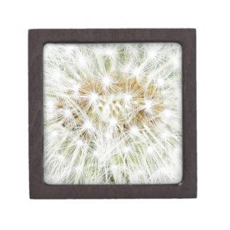 Weißer Blumen-BlumenKinderzimmer-Friedensniedliche Schmuckkiste
