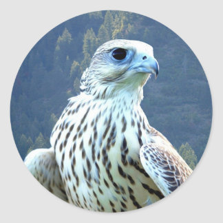 Weißer Falke Runder Aufkleber