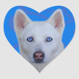 Weißer Husky-Aufkleber (blauer Hintergrund) Herz-Aufkleber