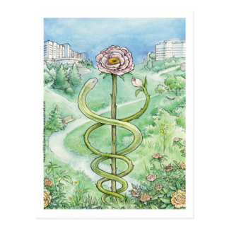 Weißer Mantel, grüne Welt (Postkarte) Postkarte