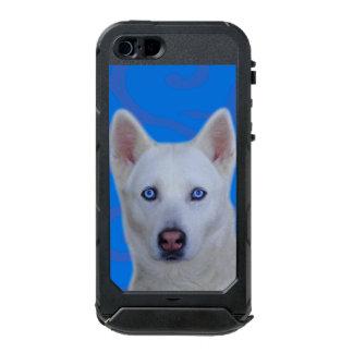 Weißer sibirischer Husky iPhone SE/5/5s ATLAS ID™ Incipio ATLAS ID™ iPhone 5 Hülle