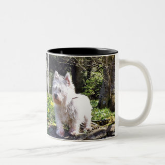 Weißer Terrier-Natur-Weg Zweifarbige Tasse