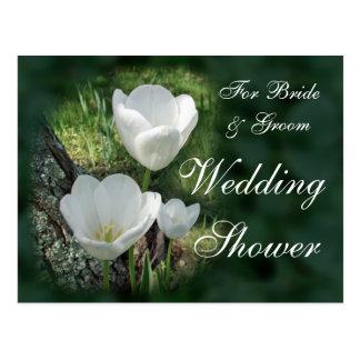 Weißer Tulpe-Polterabend Postkarte