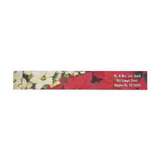 Weißer und roter Feiertag der Poinsettia-I mit