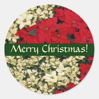 Weißer und roter Poinsettia-Weihnachtsaufkleber