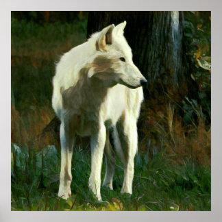 Weißer Wolf-Malerei Poster